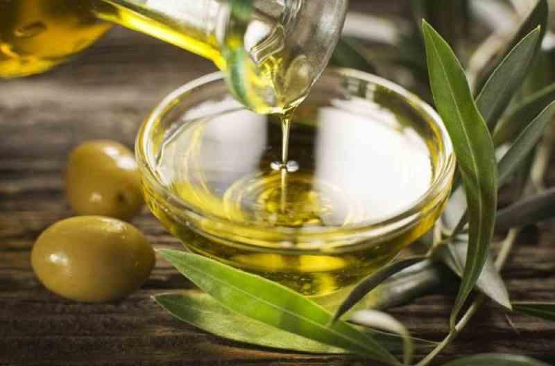 manfaat minyak zaitun untuk rambut kulit dan tubuh