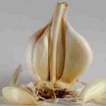 bawang putih yang dikonsumsi mentah sebagai obat intoksikasi merkuri