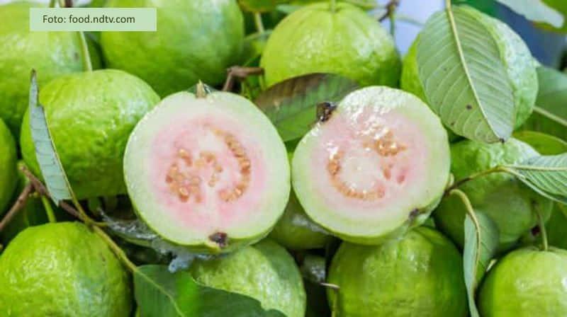 ekstrak guava sebagai penambah rasa minuman kolagen e lite plus dan manfaat untuk liver